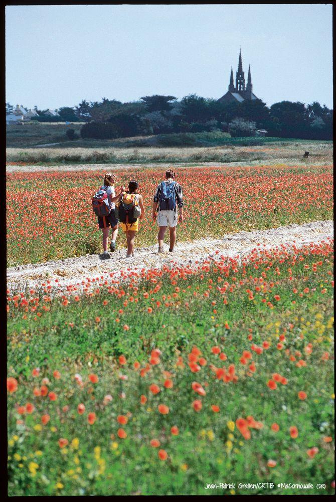Randonnée dans un champs de fleurs, vue en arrière-plan sur la Chapelle Notre-Dame-de-Tronoën
