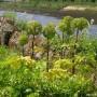 Jardins du Prieuré à Quimper, MaCornouaille