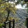 Vallée du Stangala MaCornouaille