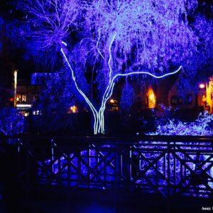 Pont-Aven en Lumière, parcours lumineux noctambule