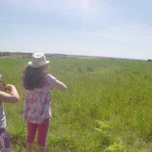 Balade nature en famille en Baie d'Audierne
